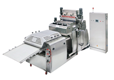 Single Head & Multi Head Encrusting & Co-Extruding Machines